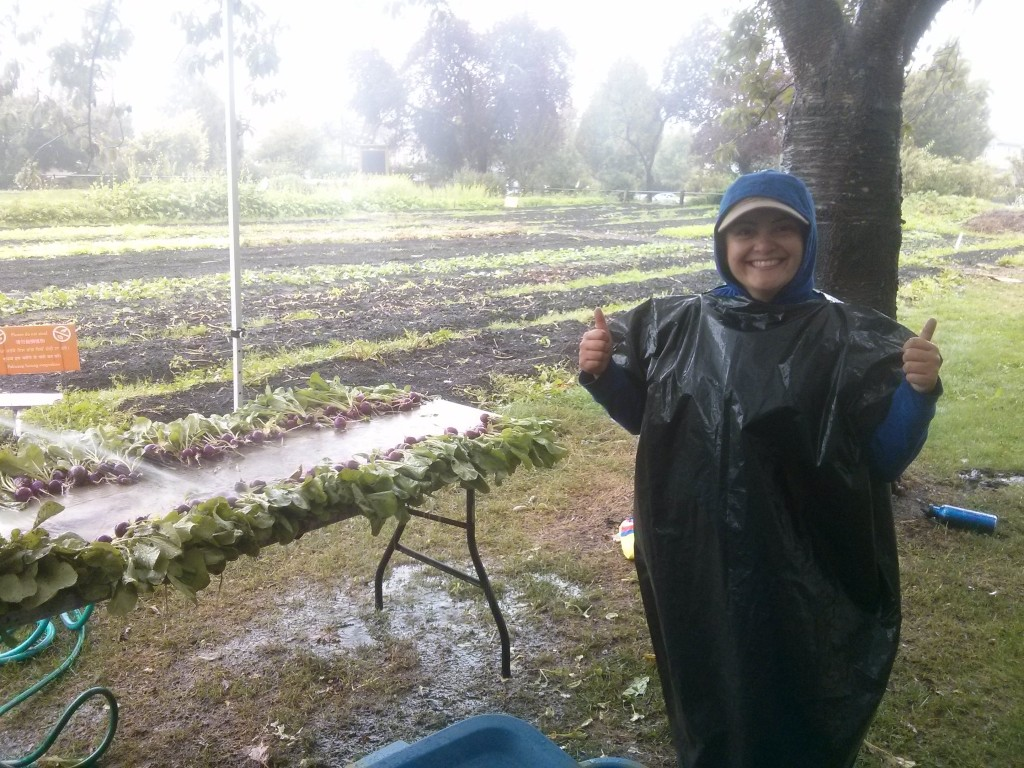 Anna, one of the fearless volunteers who came out on Monday despite the rain. She is a trooper!
