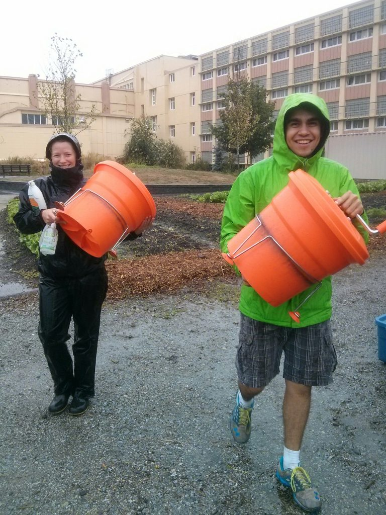 Our biggest, baddest rainy harvest day. And Gerson braves it out in shorts!