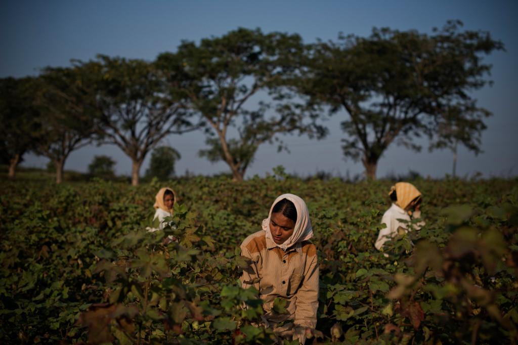 farmers-india