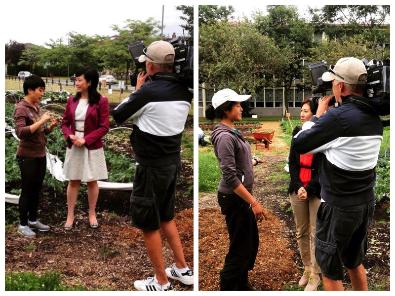 Winnie and I's moment of fame. Being able to speak Chinese pays off when Omni TV drops by.